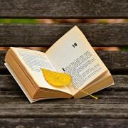 A la vejez, lecturas
